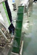 水果整箱包装自动称重机,大小等级分级分选秤